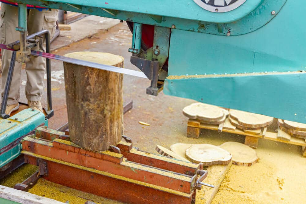 Band saw cutting small log at sawmill